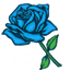 An extraordinary and rare blue rose that symbolizes the impossible or unattainable.