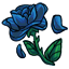 This rose doesn't look that pretty anymore, didn't get any water maybe :<