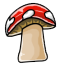 This mushroom is kinda fussy and may attack if angry.