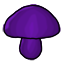 How pretty a purple mushroom.